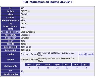 scheda database